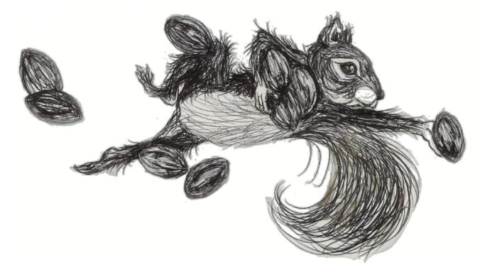 squirrel-elaine